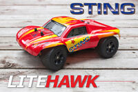Litehawk Sting jr RC Radio Controlled cars set