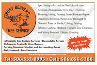 BUSY BEAVERS TREE SERVICE