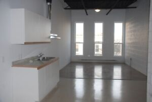 MODERN & RENOVATED DOWNTOWN APARTMENT FOR RENT