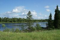 land for sale 5 QUARTERS/Riding Mountain Park/Clear Lake/MB