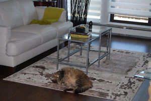 Coffee Tables,Nesting