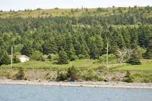 Oceanfront Property for Sale - Hr. Grace South, NL.