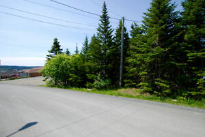 GROVES ROAD! 1/2 Acre in the City! NOW $149,900! St. John's Newfoundland image 2