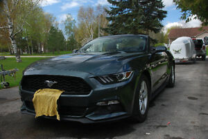 2016 Ford Mustang lxi Convertible