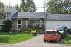 3 Bedroom house for rent in village of Lisle (north of Alliston)