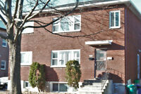Room for rent in apartment - 5 min bus to Carleton