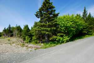 GROVES ROAD! 1/2 Acre in the City! NOW $149,900! St. John's Newfoundland image 3