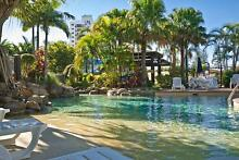 SUNSHINE COAST HOLIDAY ACCOMMODATION AVAILABLE NOW Alexandra Headland Maroochydore Area Preview