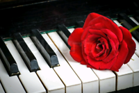 ☀️☀️☀️ PIANO LESSONS FOR ADULTS CHILDREN SENIORS
