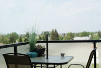 REDUCED!!! Stylish top floor condo in Aurora Estates!