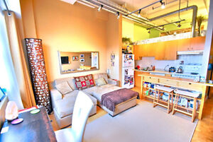 Fully Furnished two bedroom loft king west