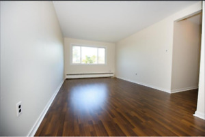Sublet One Bedroom Apartment