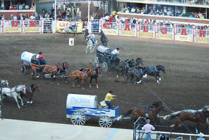 Stampede Chucks & Evening Show **4 CLUBHOUSE SEATS**July 10
