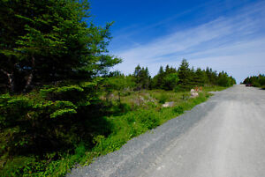 GROVES ROAD! 1/2 Acre in the City! NOW $149,900! St. John's Newfoundland image 1