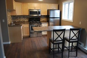 1BR downtown apartment, Fully Furnished and recently renovated