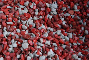 Aquarium Gravel Kitchener / Waterloo Kitchener Area image 2