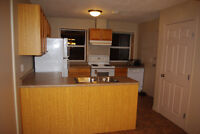 Two bedroom downtown apartment Available Dec1