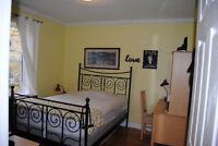 FURNISHED ROOM INCL UTIL FREE LAUNDRYWIFI OLD OTTAWA SOUTH