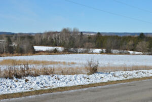 Build Your Dream Home on Over 56 Acres!