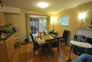 Newly Renovated 2 Bedroom Apartment with full basement