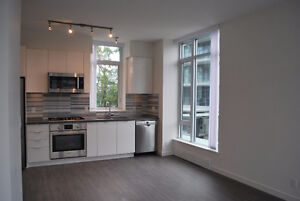 2 bed 1 bath 828sf  in the River District in Fraserview
