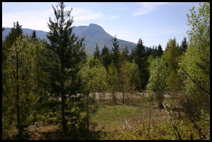 PANORAMA RANCH IN SALMON ARM