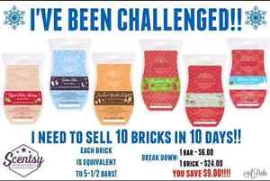 Scentsy brick limited edition  Prince George British Columbia image 3