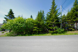 GROVES ROAD! 1/2 Acre in the City! NOW $149,900! St. John's Newfoundland image 4