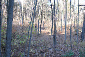 BUILD YOUR DREAM HOME ON THIS BEAUTIFUL WOODED LOT. Kingston Kingston Area image 4