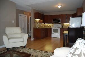 1 BR Fully Furnished Exec. apartment in Cathedral