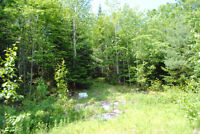 22.8 Acre Wood Lot Bordering the 103 Highway