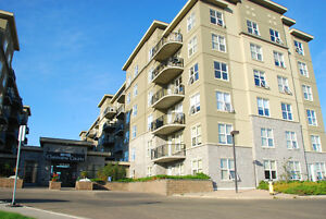 Comfy & Convenience Concrete Condo By Clareview LRT station
