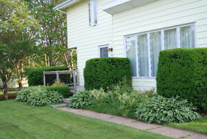 Home in great family neighbourhood with mature gardens.