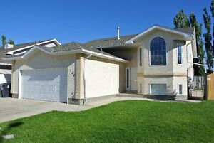 Beautifully updated, fully developed bi-level. Must see!