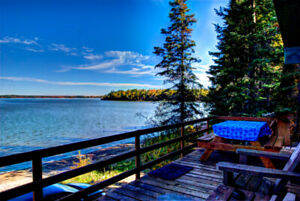 Deluxe lakefront cabin avail. 3+ days starting August 11!