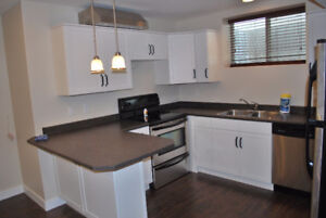 Large Bright Basement Suite in Pineview