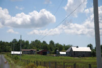 Farm For Sale Eastern Ontario (With Passive Income)