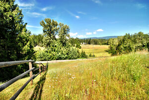 Shuswap Acreage For Sale - Suitable for Horses