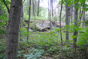 BUILD YOUR DREAM HOME ON THIS BEAUTIFUL WOODED LOT. Kingston Kingston Area image 2