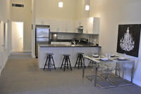 The Lofts Now Renting For The 2016/17 School Year!