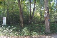 At Francis Lake - Lot 15 Alice St., $49,900 - Vacant Lot