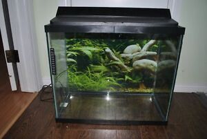 25 Gallon tall fish tank plus accessories