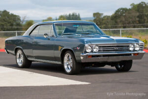 Wanted 1967 Chevelle