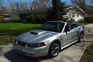 2004 Mustang - 40th Anniversary - GT Convertible.