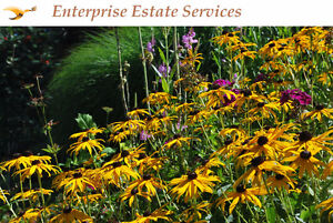 Yard waste Clean up & Removal, Reasonable Rates Local Company!