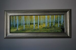 Beautiful Forrest Painting