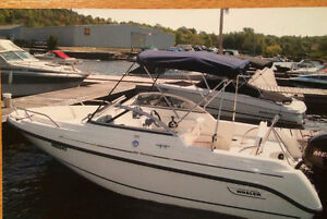 Beautiful 2008 Boston Whaler 180 Ventura Oakville / Halton Region Toronto (GTA) image 1