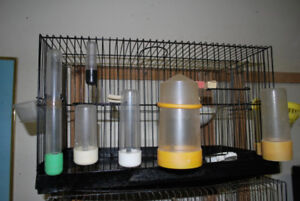 For Sale - Plastic & Glass cage bird water drinking bottles.