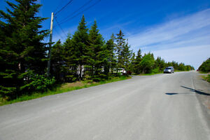 GROVES ROAD! 1/2 Acre in the City! NOW $149,900! St. John's Newfoundland image 5