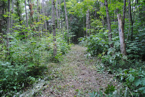 BUILD YOUR DREAM HOME ON THIS BEAUTIFUL WOODED LOT. Kingston Kingston Area image 3